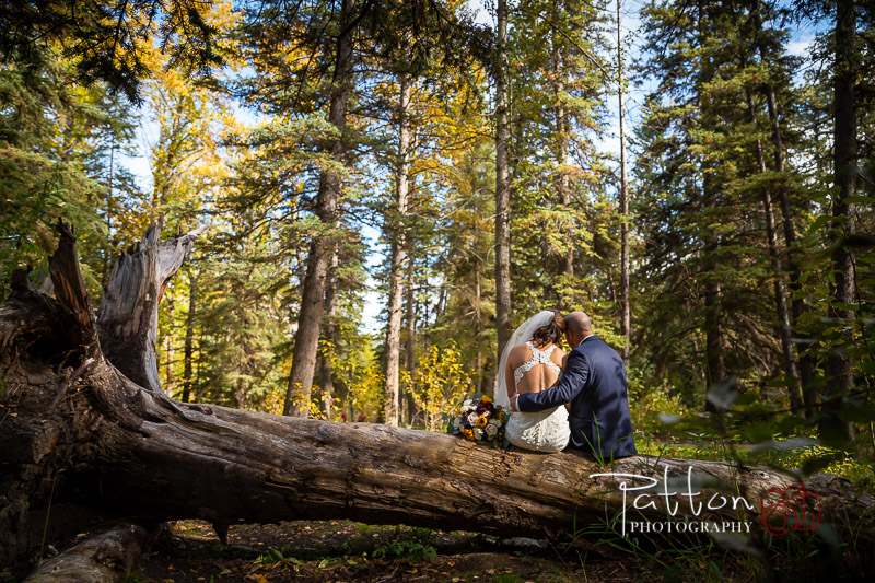 Calgary bride and groom sitting on fallen tree in park